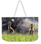 Spring Chicks In The Sunshine Weekender Tote Bag
