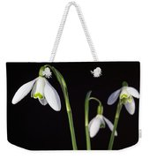 Spring Comes To A Wall Near You Weekender Tote Bag