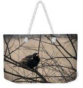 European Starling Weekender Tote Bag