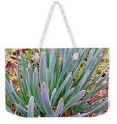 Spring Daffodil Plant Weekender Tote Bag