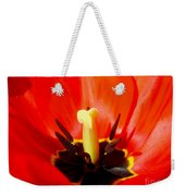 Red Tulip In Spring Weekender Tote Bag