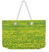 Spring Farm Panorama With Dandelion Bloom In Maine Canvas Poster Print Weekender Tote Bag
