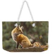 Spring Fox Weekender Tote Bag