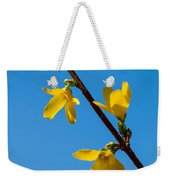 Spring Lights Weekender Tote Bag