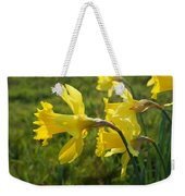 Spring Meadow Field Daffodil Flowers Weekender Tote Bag