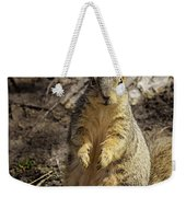 Spring Nature At Spnc Weekender Tote Bag