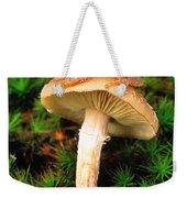 Spring Peeper On Mushroom Weekender Tote Bag