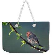 Song Bird In Spring Weekender Tote Bag