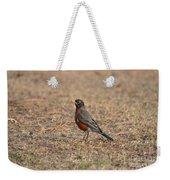 Spring Robin 2014 Weekender Tote Bag