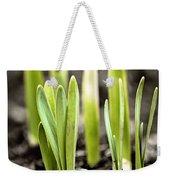 Spring Shoots Weekender Tote Bag by Elena Elisseeva