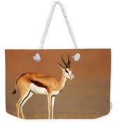 Springbok On Sandy Desert Plains Weekender Tote Bag