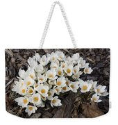 Springtime Abundance - A Bouquet Of Pure White Crocuses Weekender Tote Bag