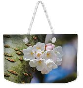 Sprouting Cherry Blossoms Weekender Tote Bag