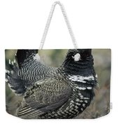Spruce Grouse Male Courting Alaska Weekender Tote Bag