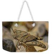 Spur-throated Grasshopper Weekender Tote Bag