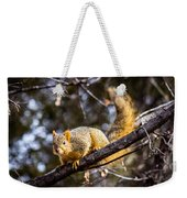 Squirrel 1 Weekender Tote Bag