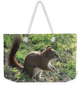Squirrel And His Sunflower Seed Weekender Tote Bag