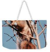 Squirrel Berry Weekender Tote Bag