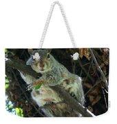 Squirrel By Nest Weekender Tote Bag