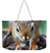 Squirrel Close-up Weekender Tote Bag