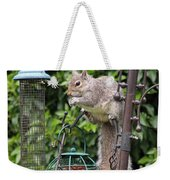 Squirrel Eating Nuts Weekender Tote Bag