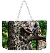 Squirrel Guarding Watering Knot Weekender Tote Bag