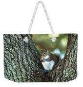 Squirrel In A Tree Weekender Tote Bag