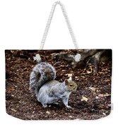 Squirrel In The Park-boston  V6 Weekender Tote Bag