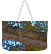 Squirrel Looking Down On Viewer Weekender Tote Bag