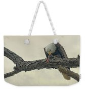 Squirrel Lunch Weekender Tote Bag