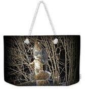 Squirrel On Birch Post Weekender Tote Bag