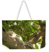 Squirrel On The Tree Weekender Tote Bag