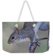 Squirrel Pose Weekender Tote Bag