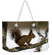 Squirrel Profile Weekender Tote Bag