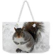 Squirrel Saying Feed Me Please At Niagara Falls Weekender Tote Bag