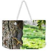 Squirrel With Pecan Weekender Tote Bag