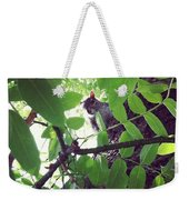 Squirrell Weekender Tote Bag