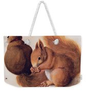 Squirrels Weekender Tote Bag
