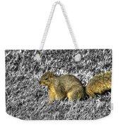 Squirrling Around Looking For Nuts Weekender Tote Bag