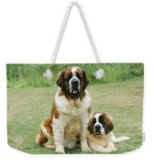St Bernard With Puppy Weekender Tote Bag