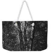 St-denis Woods 2 Weekender Tote Bag
