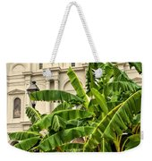 St. Louis Cathedral And Banana Trees New Orleans Weekender Tote Bag
