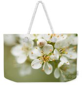 St Lucie Cherry Blossom Weekender Tote Bag
