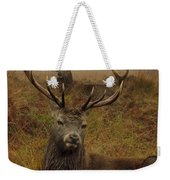 Williams Fine Art Stag Party The Series  Weekender Tote Bag