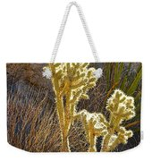 Staghorn Cholla Cactus Catching Sunlight In Joshua Tree Np-ca Weekender Tote Bag