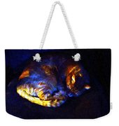 Stained Glass Snoozer Weekender Tote Bag