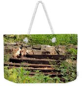 Staircase In The Forest Weekender Tote Bag