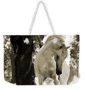 Stallion Dances In Sepia Weekender Tote Bag