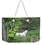 Stallion On Independence Day Weekender Tote Bag
