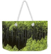 Stand Of Birch Trees New Growth Spring Rich Green Leaves Weekender Tote Bag